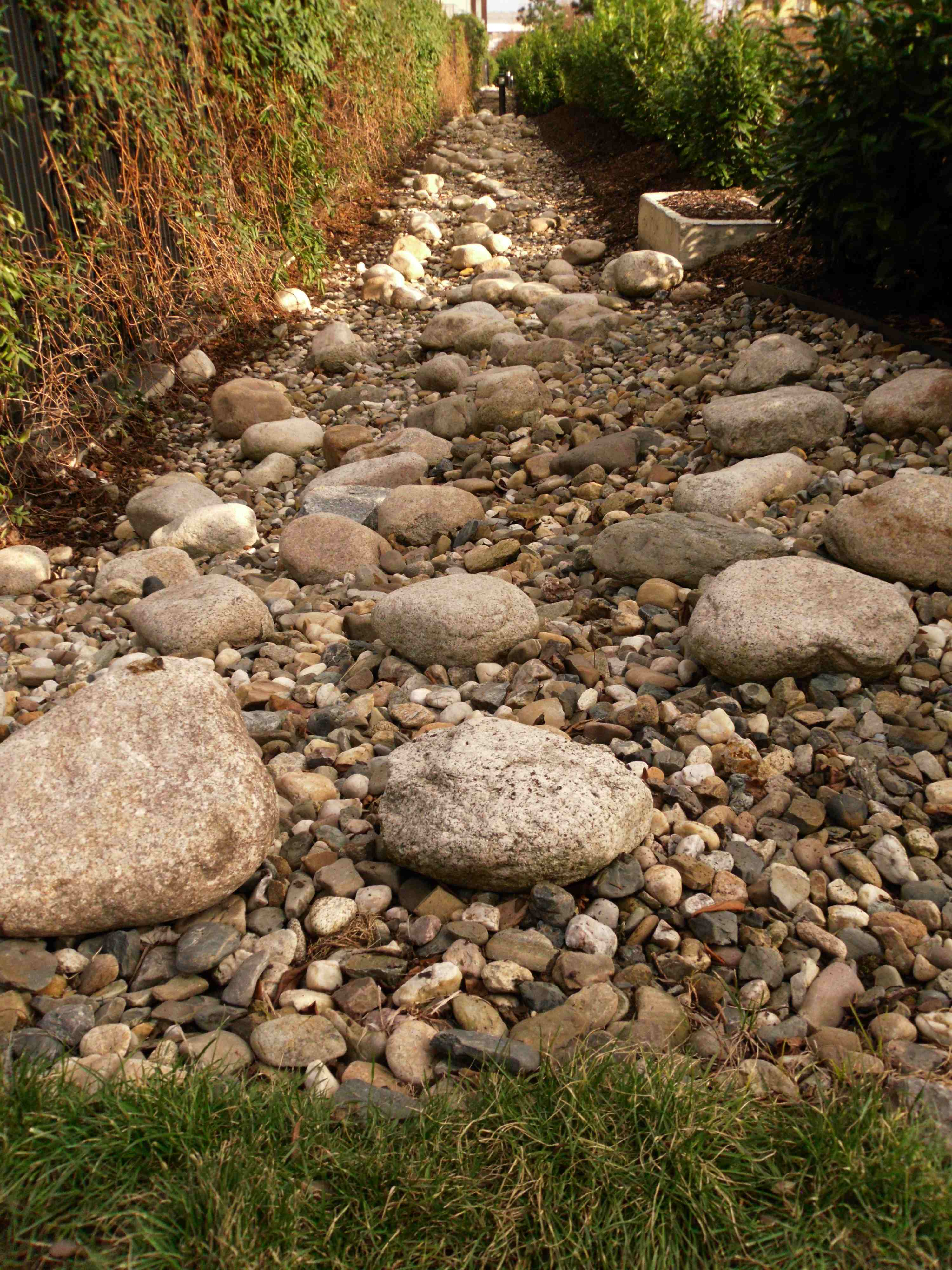 1SDC15866-Kamenna reka (1)