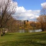 Rybník na potoce Brusnice...