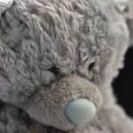 Jmenuji se Teddy...