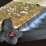 ...já na mostě...